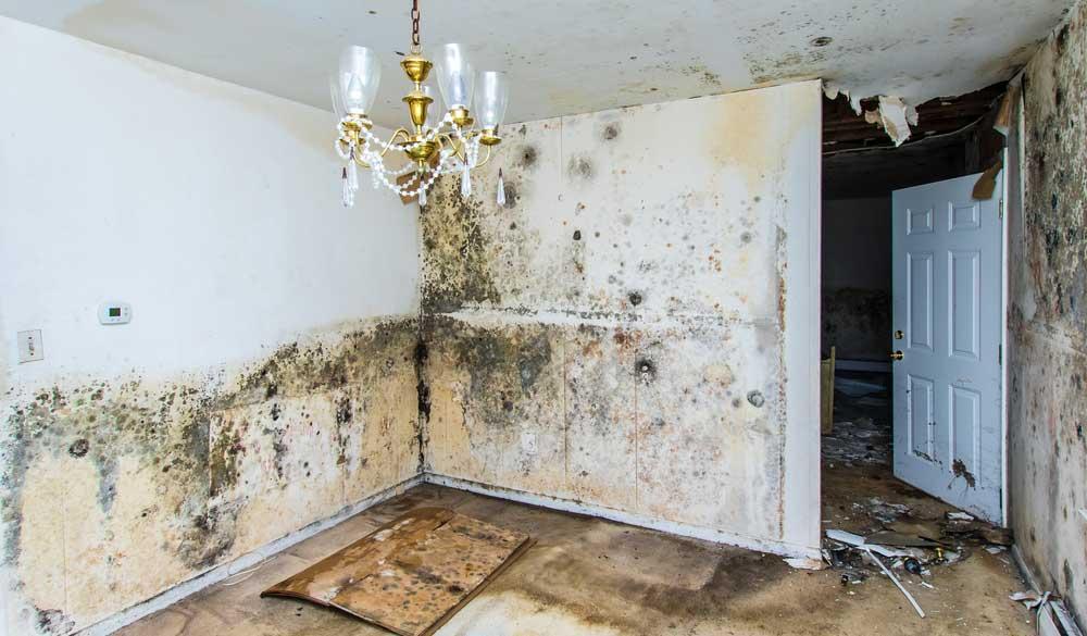 degradare casa lipsa Hidroizolatie
