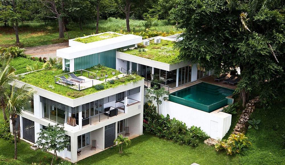 acoperis vegetal casa