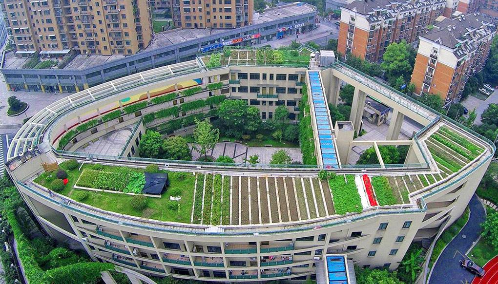acoperis verde pe bloc
